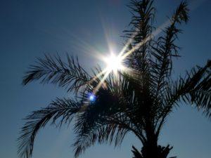 Ostatnie chwile zhiszpańskim słońcem - Torremolinos