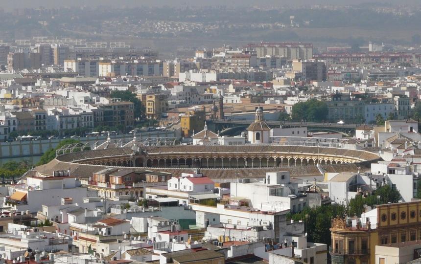 Widok naSewillę zwieży katedralnej, Plaza de Torres, Sewilla, Hiszpania