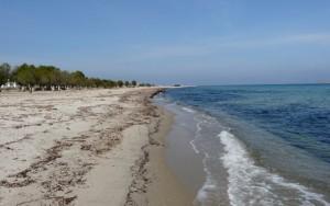Plaża wTigaki, wyspa Kos