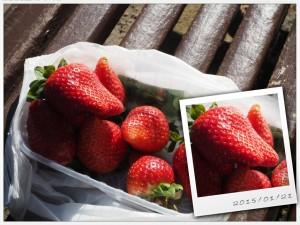 Świeże ipyszne truskawki zMercado Central, Walencja