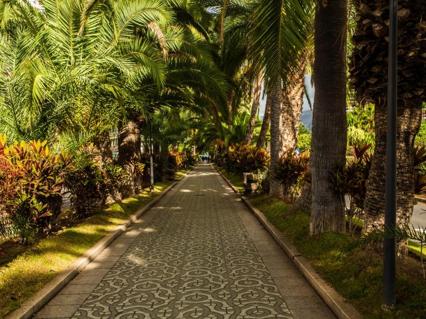 Zwiedzanie Puerto de la Cruz, Teneryfa