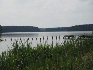 Spływ kajakowy Pliszką - relacja zwyjazdu
