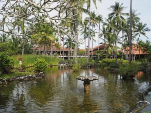 Hotel Melia Bali - ogród
