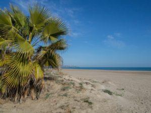 Costa Blanca – białe wybrzeże pełne słońca