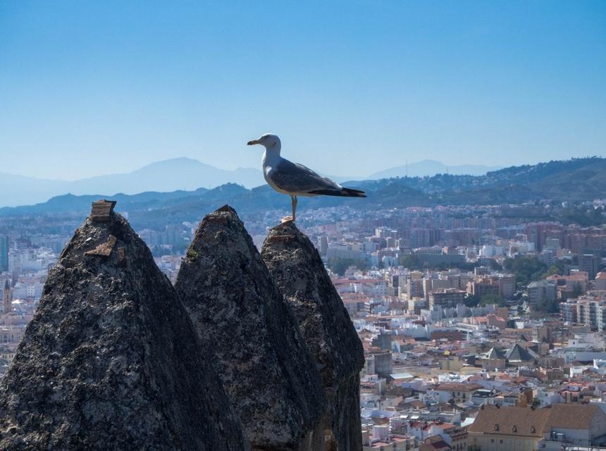 Malaga - widok zCastillo de Gibralfaro