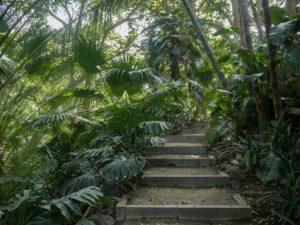 Ogród botaniczny wMaladze, Costa del Sol, Hiszpania
