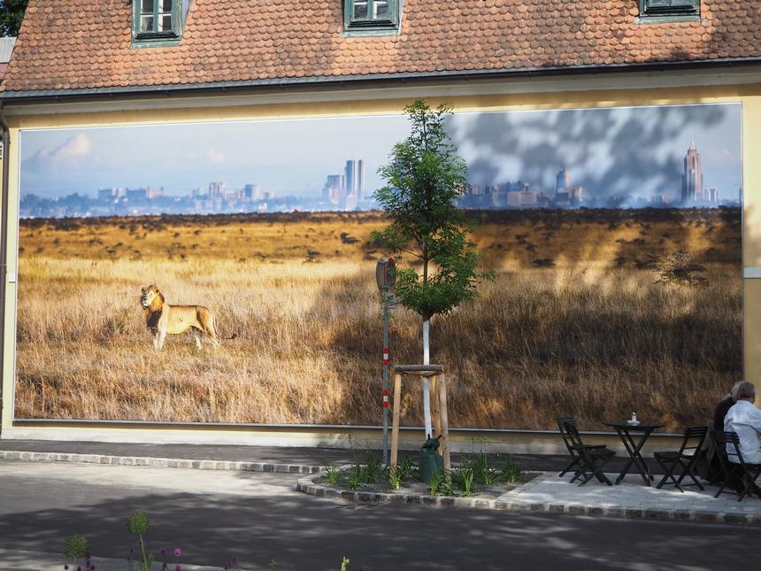 Jedno znajlepszych zdjęć nafestiwalu fotograficznym La Gacilly, Baden, Austria