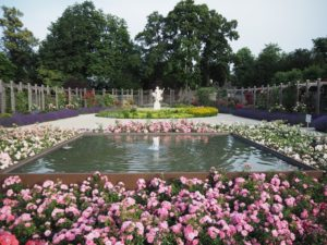 Ogród różany, Baden bei Wien, Austria