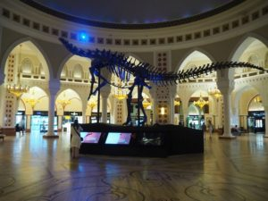 Dubai Mall - centrum handlowe wDubaju
