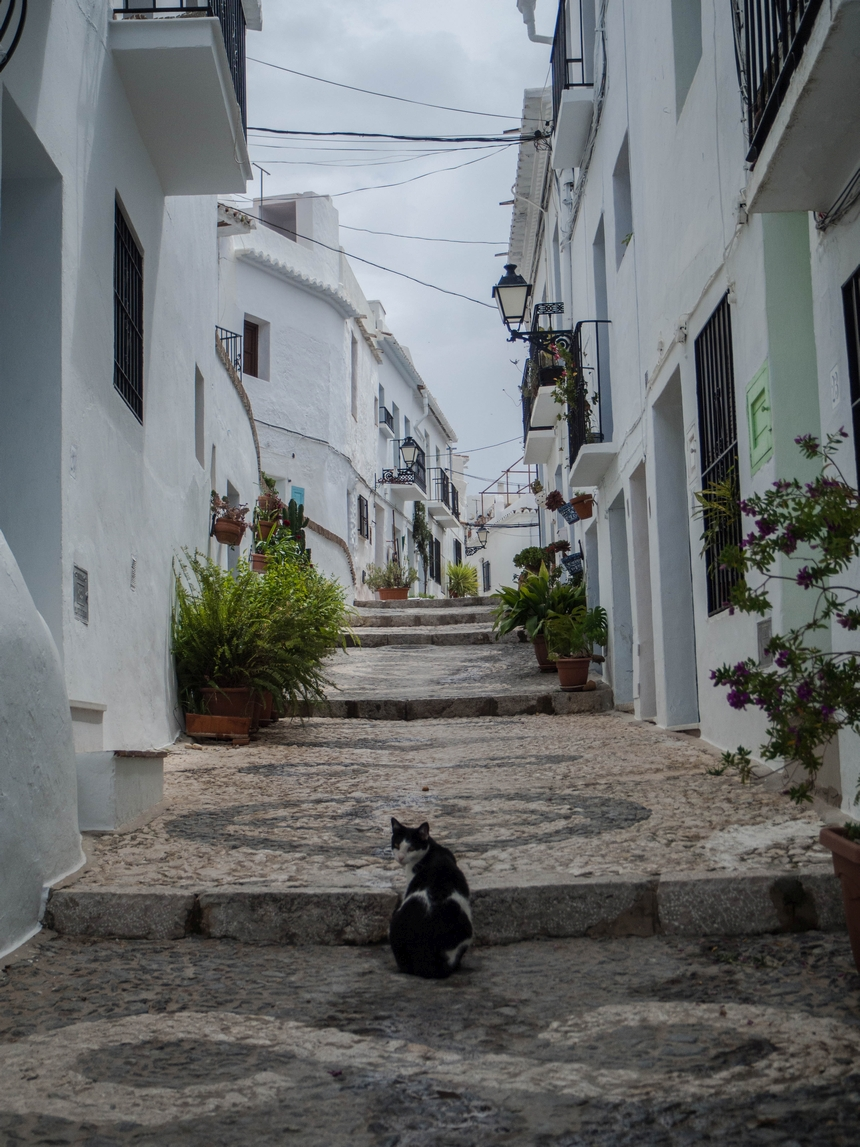 Charakterystyczne dlaFrigiliany są białe domki położone nawzgórzu