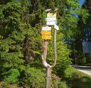 Przełęcz Płoszczyna: 817 m n.p.m., Góry Bialskie