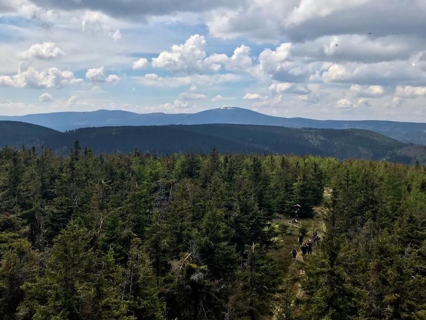 Widok naŚnieżnik zwieży widokowej naCzernicy, Góry Bialskie