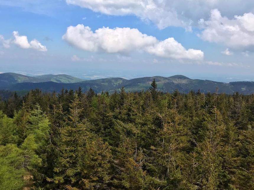 Widok zwieży widokowej naCzernicy, Góry Bialskie