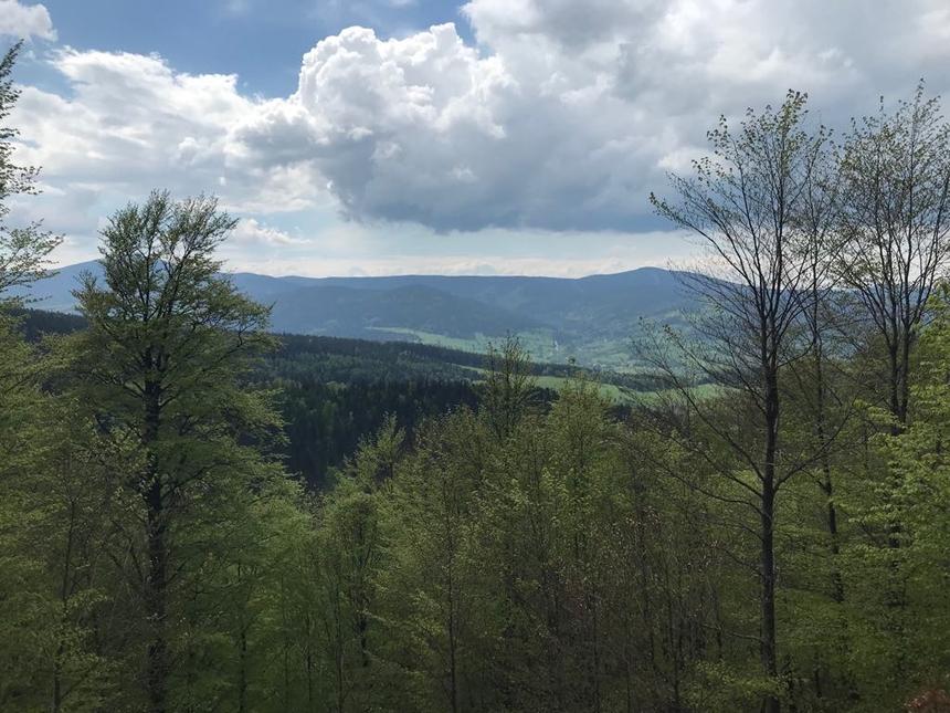 Widoki ztrasy doStronia Śląskiego, Góry Bialskie