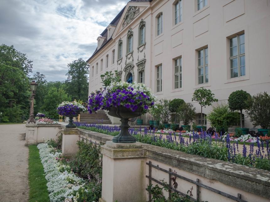 Pałac Branitz - widok od przodu, Chociebuż
