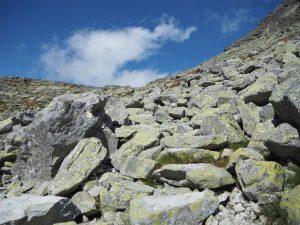 Kamienie naszlaku żółtym zBystrej Ławki