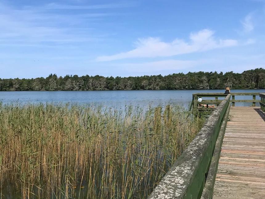 Jezioro Dołgie Małe