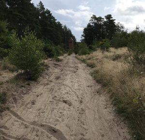Trasa rowerowa naodcinku Łeba - Sarbsk