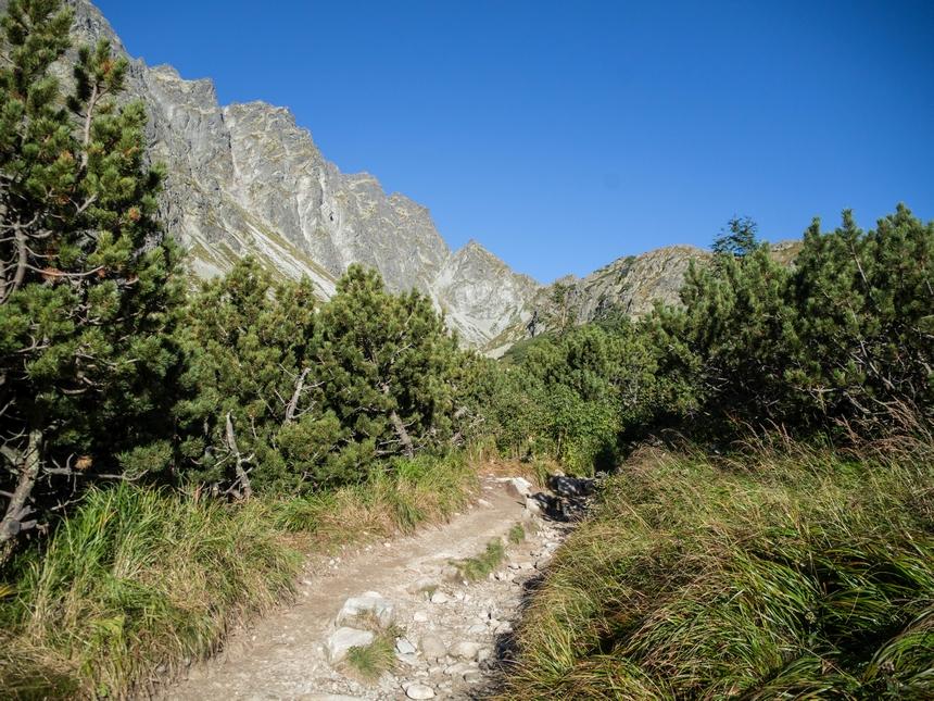 Widoki naTatry zniebieskiego szlaku naRysy, Tatry Wysokie