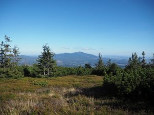 Widok naBabią Górę - najwyższy szczyt Beskidu Żywieckiego