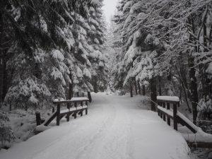 Zima wgórach ma niesamowity klimat