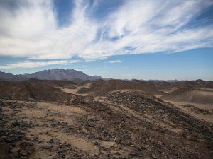 Zalążek pustyni wEgipcie