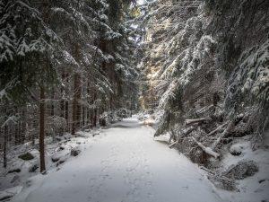 Droga doBłędnych Skał, Góry Stołowe