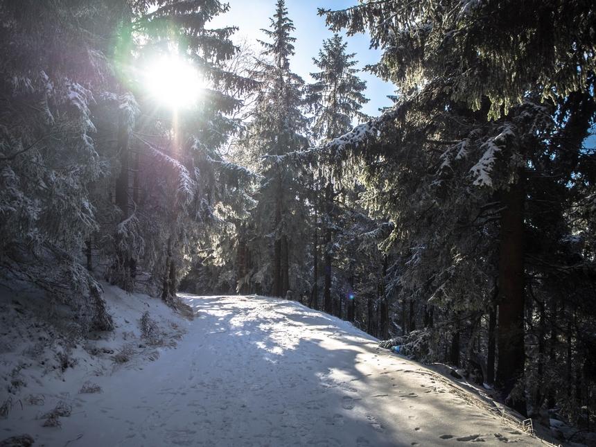 Droga powrotna zBłędnych Skał, Góry Stołowe
