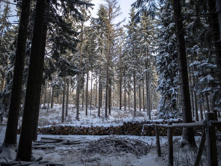 Tak wygląda zimowa trasa naBłędne Skały, szlak niebieski