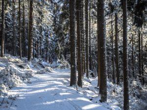 Najpiękniejsza zima jest wgórach, Góry Stołowe