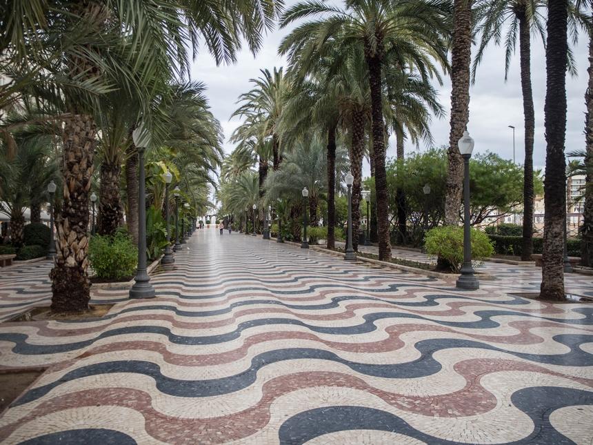 Promenada palmowa (Explanada de España), Alicante