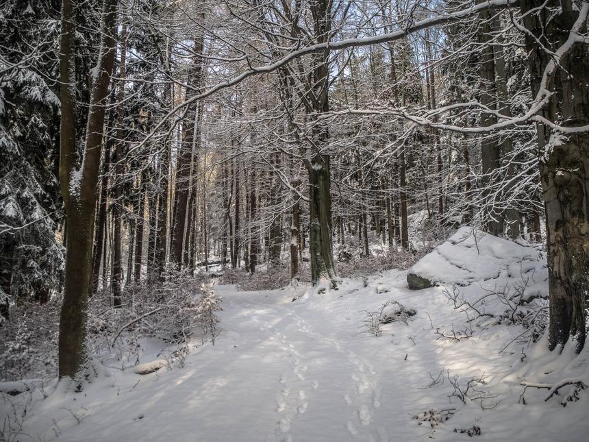 Zimowy szlak naBłędne Skały, Góry Stołowe