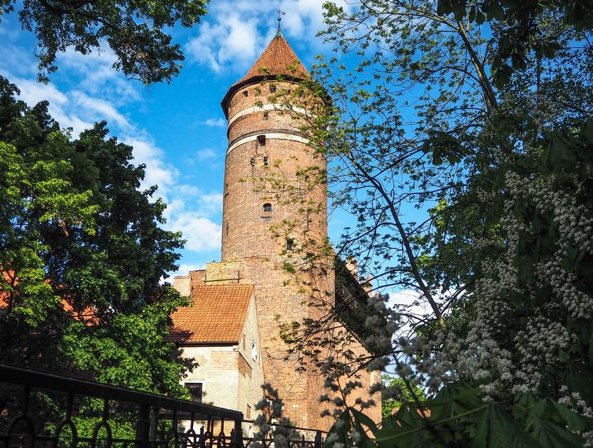 Co warto zobaczyć w Olsztynie? Weekend w stolicy Warmii i Mazur