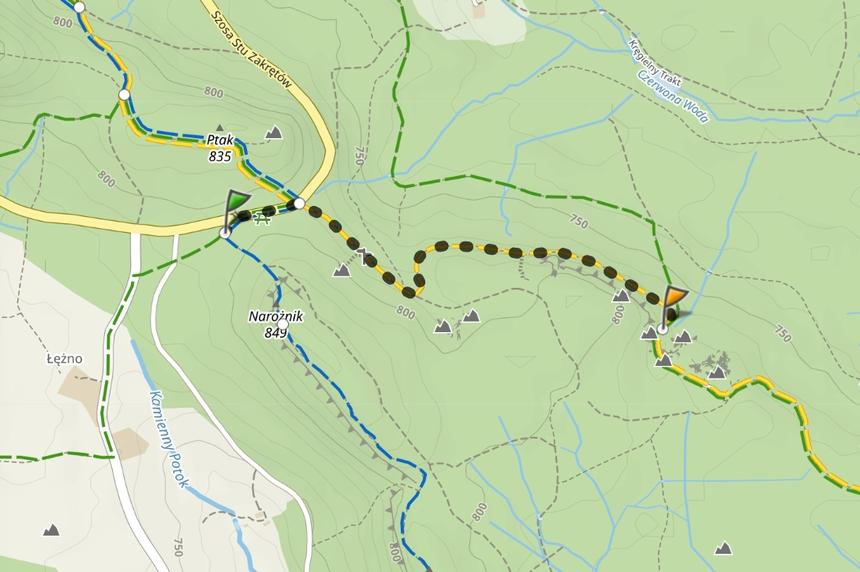 Odcinek szlaku zparkingu naLisiej Przełęczy doSkalnej Furty | Góry Stołowe