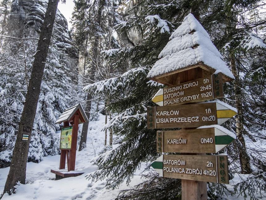 W drodze naSkały Puchacza - Góry Stołowe